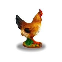 Курица средняя 35х30х16 см - фото 31522