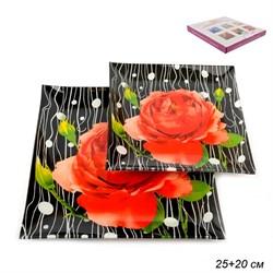 Тарелки квадратные 2 предмета 25, 20 см W1002-Z841 - фото 4594