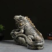 Игуана бронза полистоун 45х22х29 см