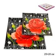 Тарелки квадратные 2 предмета 25, 20 см W1002-Z841